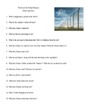 Boy in the Striped Pajamas Movie Questions