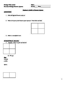 Bozeman Biology Video Guide-Beginner's Guide to Punnett Squares