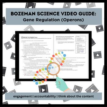 Bozeman WAL (write-a-long): Gene Regulation