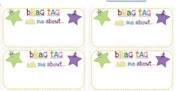 Brag Tags Positive Reinforcement Tool