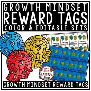 Growth Mindset Brag Tags & Problem Solvers [Positive Behavior Incentive]