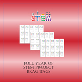 Brag Tags for STEM Project