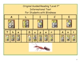 Braille, K- 2 Guided Reading, Level F, Alice the Super Ant