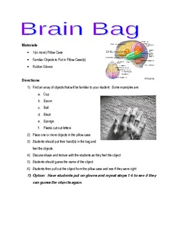 Brain Bag - Individual 5 Senses Lab