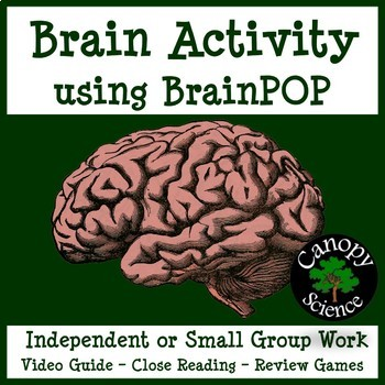 Brain Activity using BrainPOP