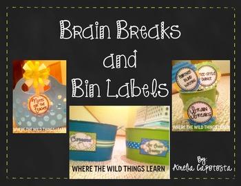 Brain Breaks and Bin Labels Freebie!