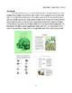 Brain Builders Units Guidebook