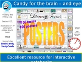 Brain Candy Study Guide Lit Terms Posters - 100!