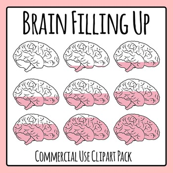 Brain Filling or Brain Draining Sequence / Progress Clip Art for Commercial Use