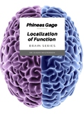 Brain Function Localization: The Phineas Gage Story