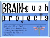 Brain Gush Projects: Fifth Grade GT Fast Finisher Math