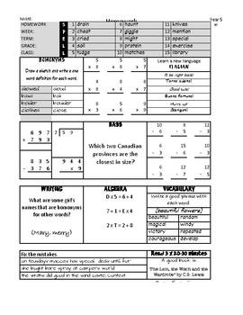 Brain Magic Elementary Word Workbook (Homographs)
