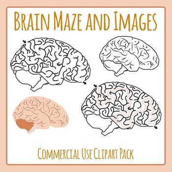 Brain Maze and Images Clip Art for Commercial Use
