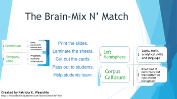 Brain Mix N' Match