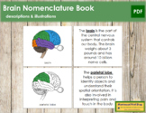 Brain Nomenclature Book
