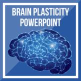 Brain Plasticity PPT
