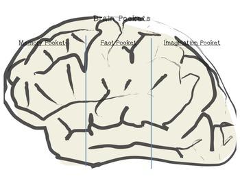 Brain Pockets