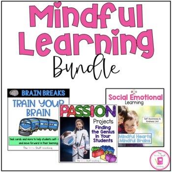 Self Regulation & Mindful Learning Curriculum