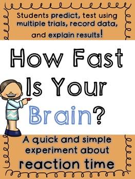 Brain Reaction Time Experiment