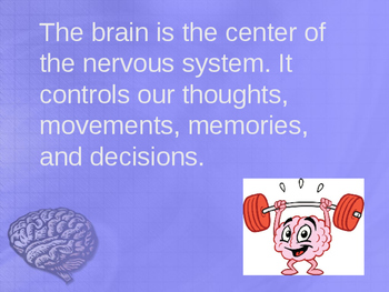 Brain Twisting Facts! (Facts about the Brain)