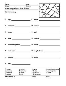 Brain Word Scramble Printable