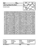 Brain Word Search Printable