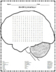 Brain Word Search Puzzle and Brain Challenge Word Search Puzzle - Two Puzzles!