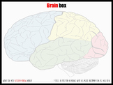 Brain box - starter
