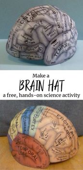The Original Brain Hat