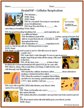 BrainPOP Video Worksheets for 5th Grade