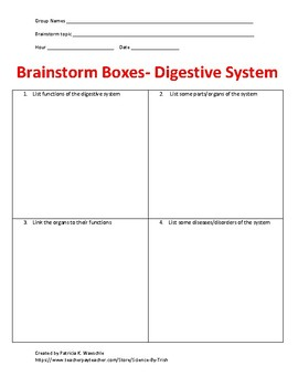 Brainstorm Boxes - The Digestive system