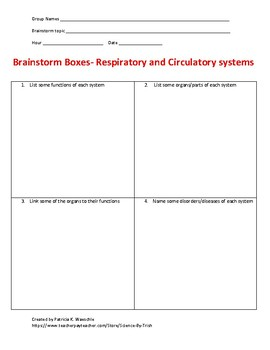 Brainstorm Boxes - The Respiratory and Circulatory systems