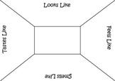 Brainstorm Chart