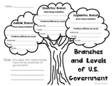 Branches and Levels of Government Tree Graphic Organizer