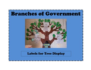 Branches of Government Display
