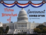 Branches of Government Distance Learning Lesson and Projec