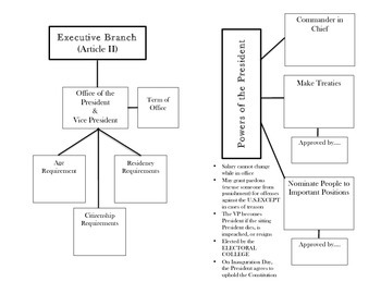 Branches of Government - Graphic Organizer