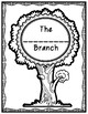 Branches of Government Graphic Organizers