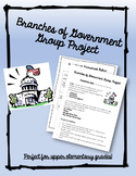 Branches of Government Group Project