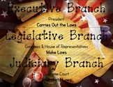 Branches of Government Labels