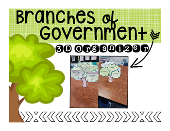 Branches of Government Organizer