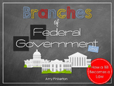 Branches of Government and How a Bill Becomes a Law U.S History