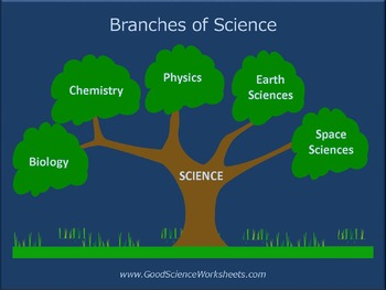 Branches of Science [Presentat...