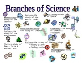 Branches of science graphic organizer