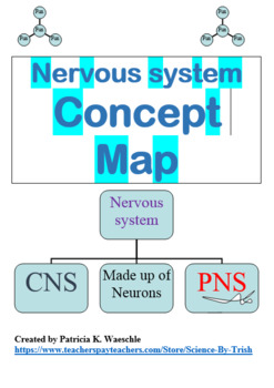Body System Concept Map Teaching Resources