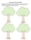 Branching Out with Root Words