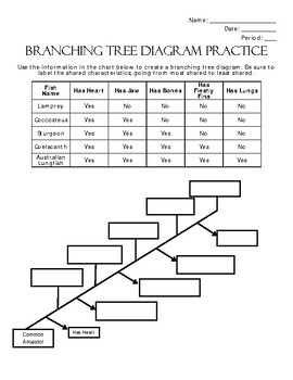 Branching Tree Diagram Extended Practice Avitities