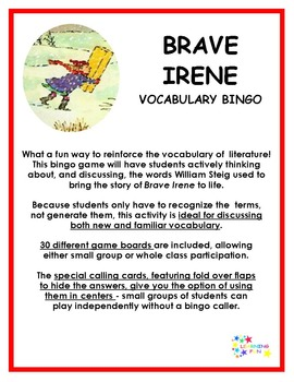 Brave Irene Vocabulary Bingo
