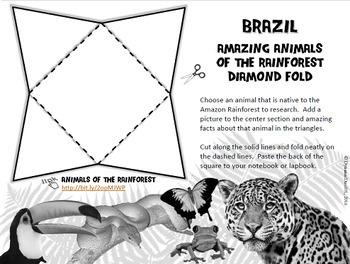 Brazil Interactive Notebook / Lapbook Activities Bundle with Test Prep Passage