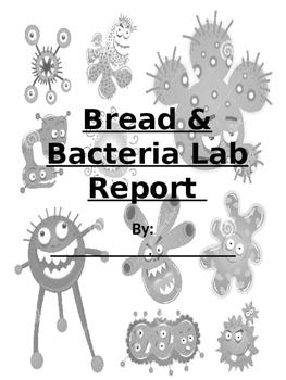 Bread Bacteria Lab